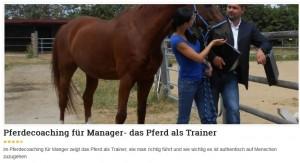 Pferdecoaching für Manager