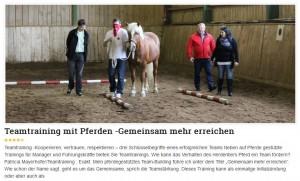 Teamtraining mit Pferden - Gemeinsam mehr erreichen